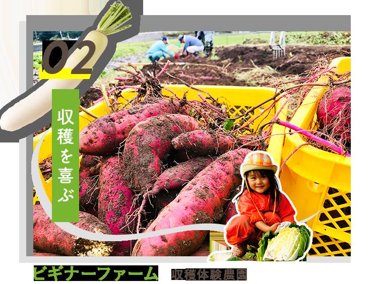 02.収穫を喜ぶ ビギナーファーム 収穫体験農園